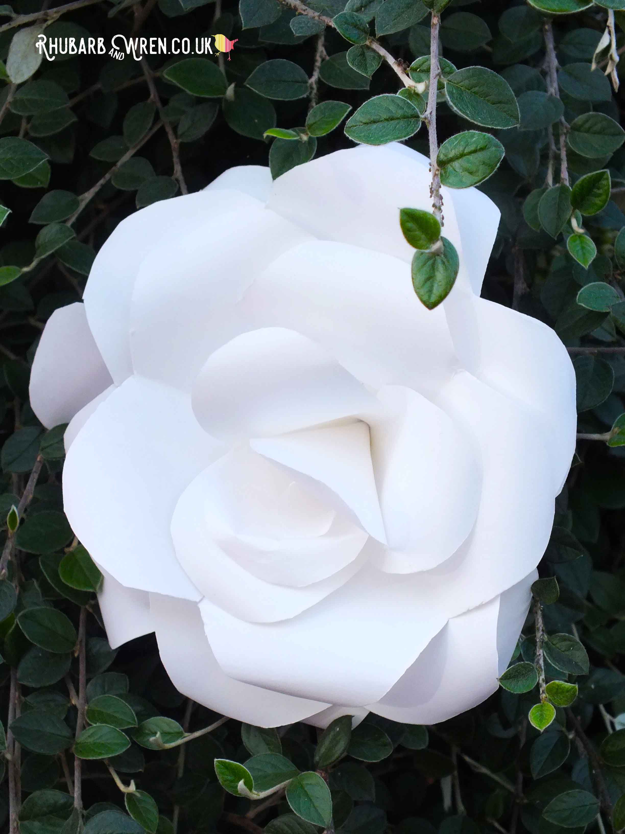 alice_in_wonderland_white_paper_rose