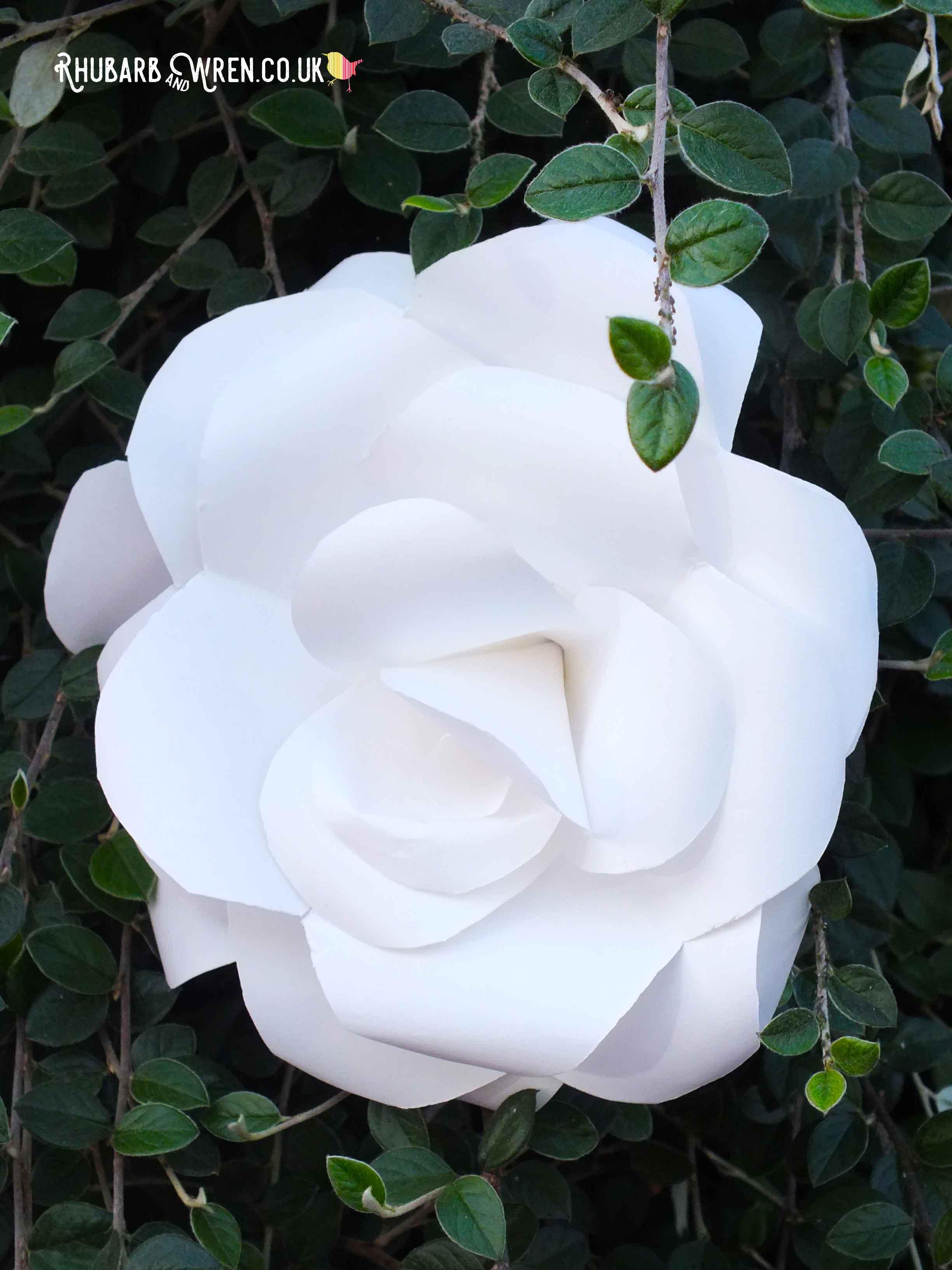 alice_in_wonderland_white_paper_rose