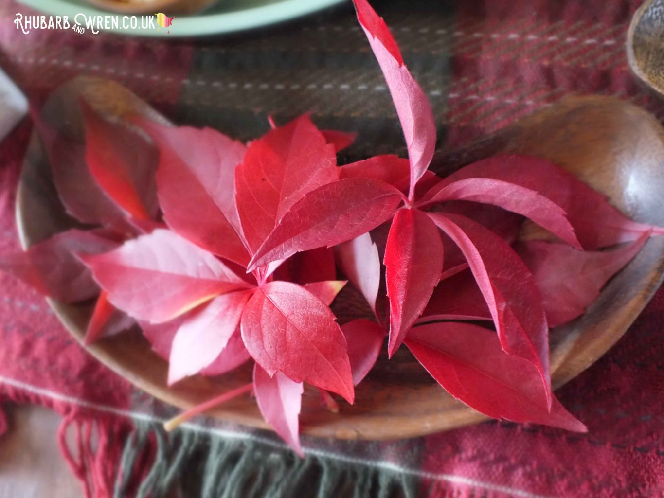 red leaves in a bowl