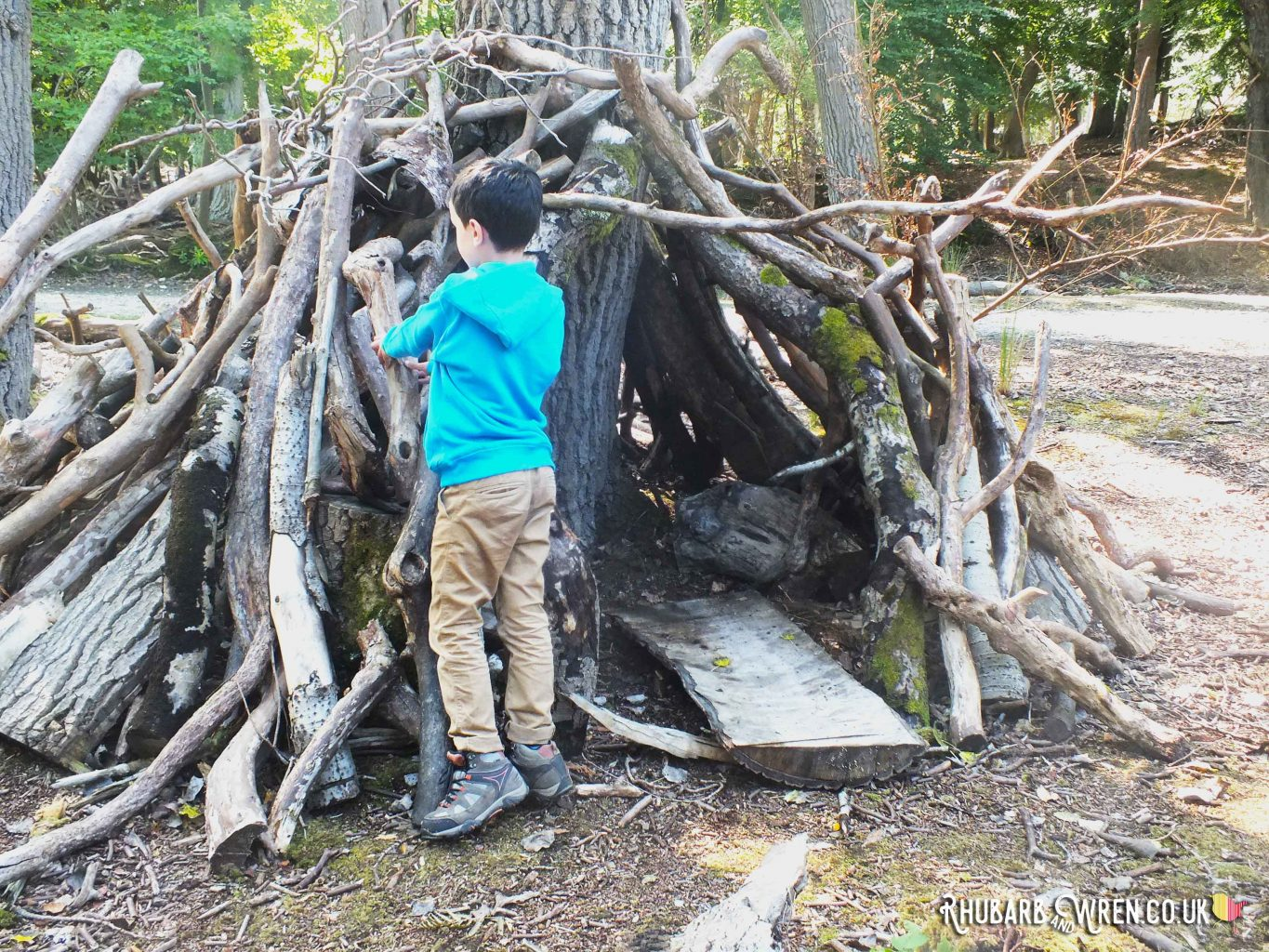 Boy building a den in the woods