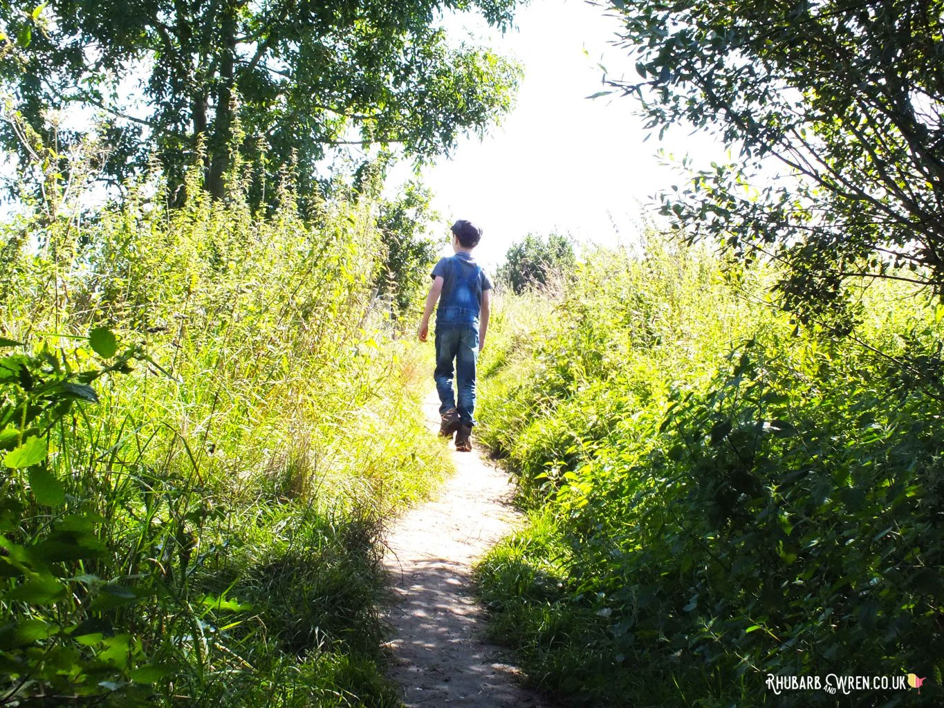 Boy walking along path through sunlit long grass