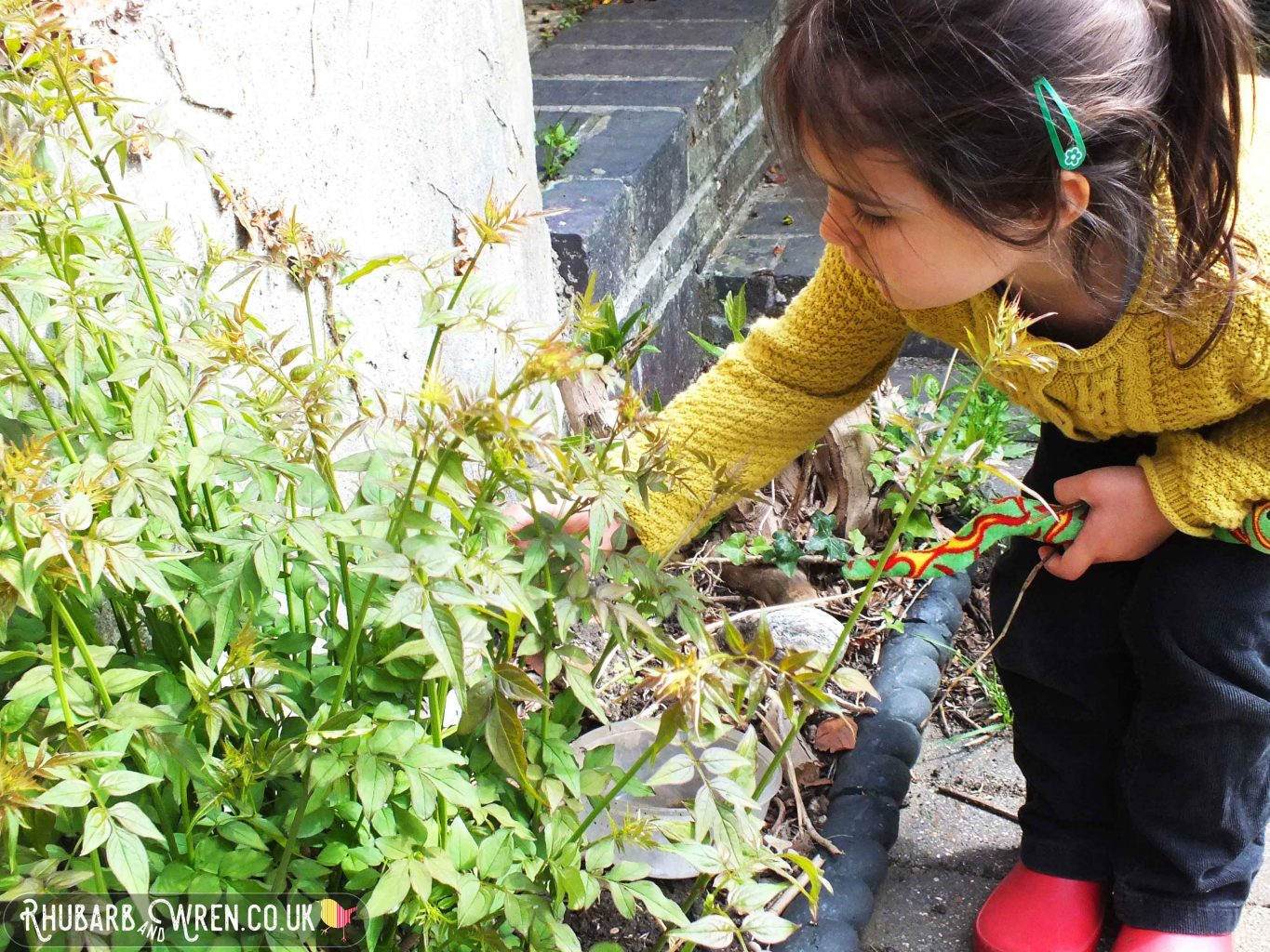 Little girl picking leaves in a garden