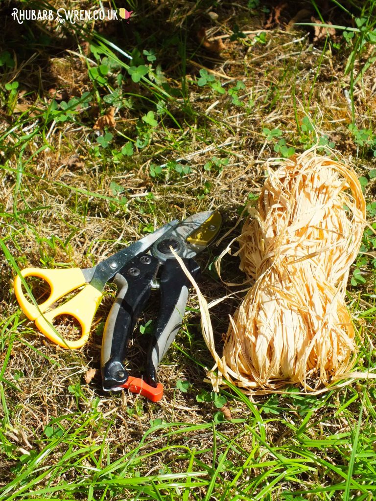 Scissors, secateurs and raffia for mini den building