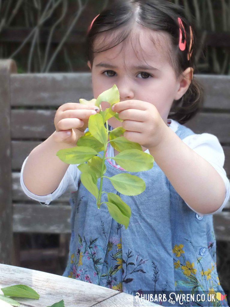 child hole punching leaves