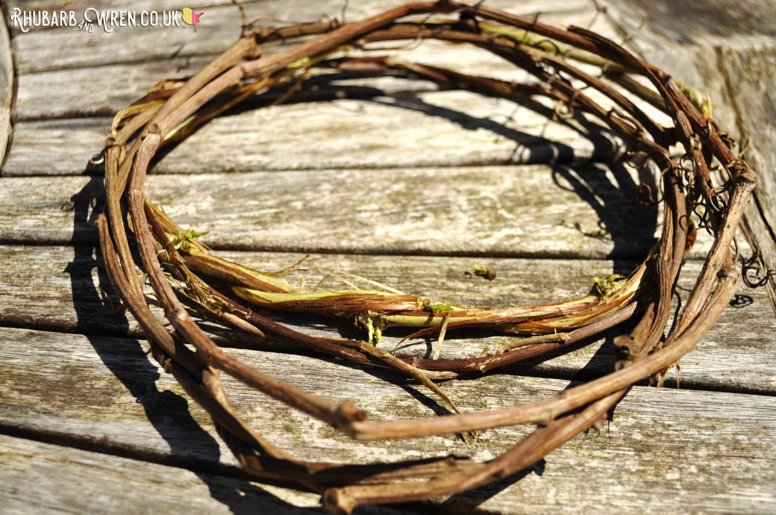 Vines twisted into simple wreaths to make a twig ball lantern