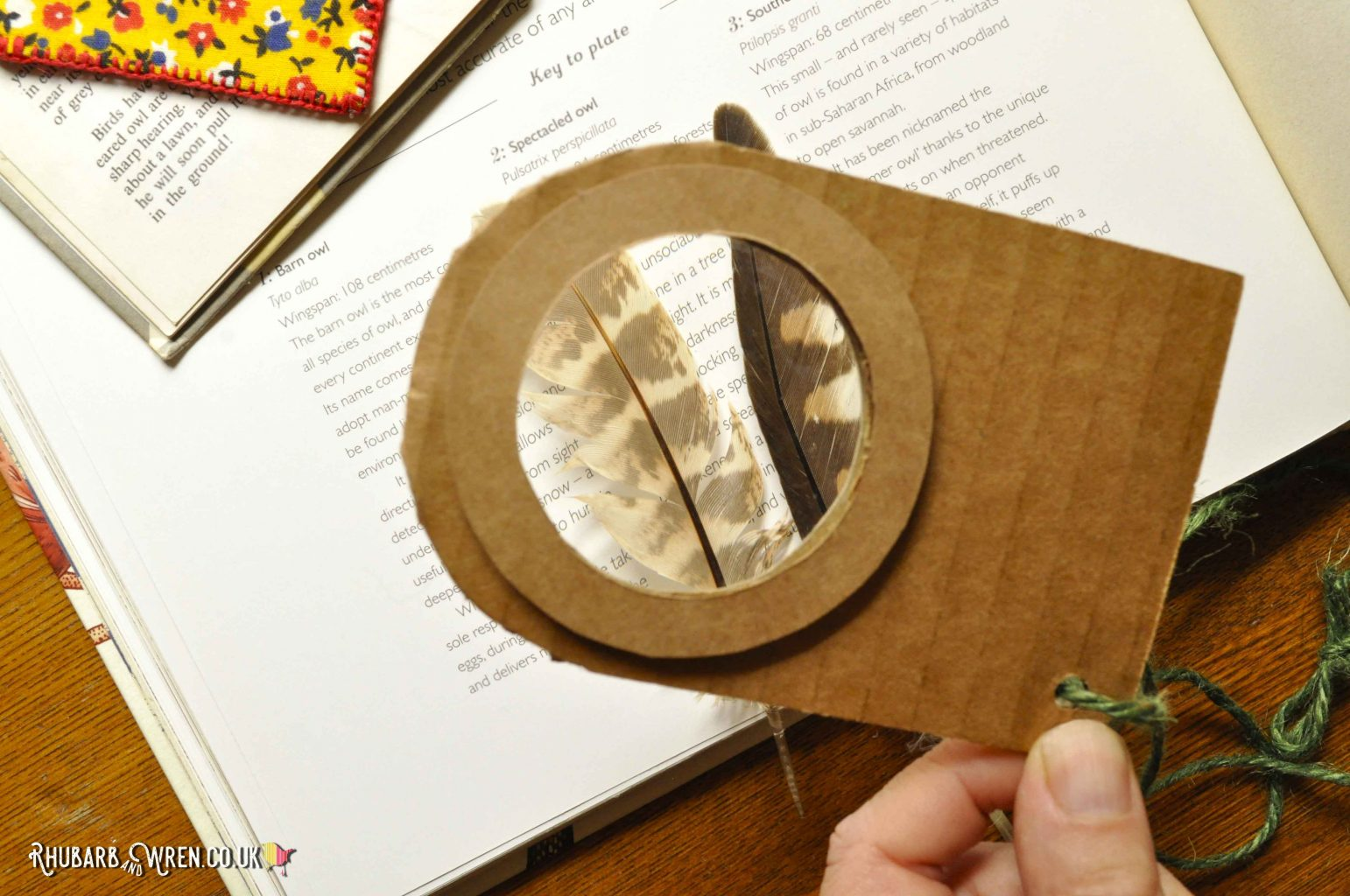 A cardboard, home-made magnifying glass