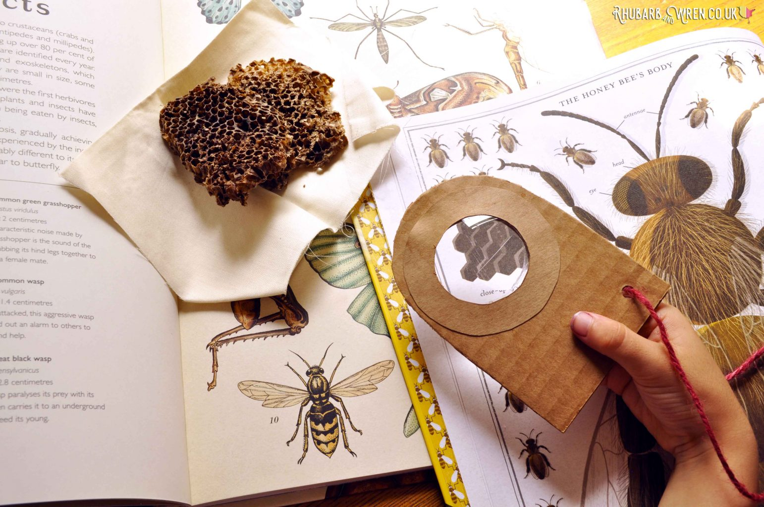 A real magnifying glass made from cardboard
