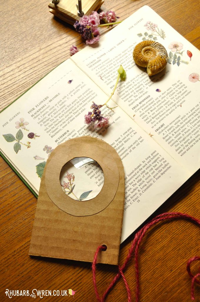 A diy magnifying glass made from corrugated cardboard