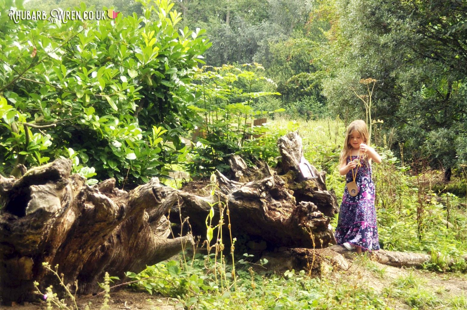 Kids treasure hunt in a fairy garden at Mannington Hall, Norfolk