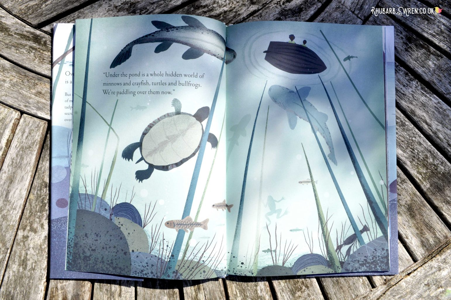 Page from Over and Under the Pond - looking up from the bottom of the pond and seeing creatures swimming above.