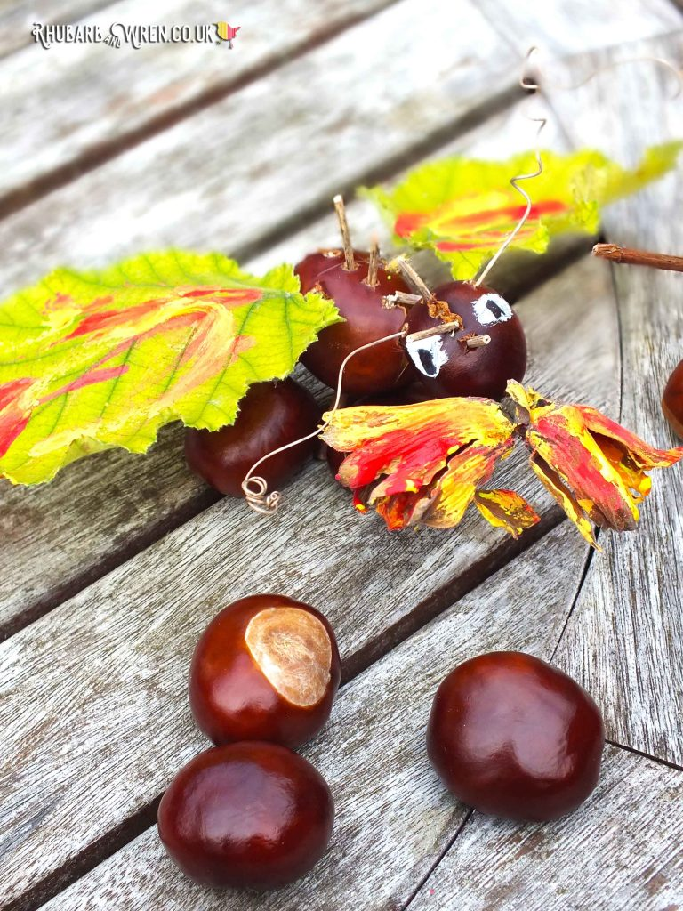 A conker dragon, with painted wings