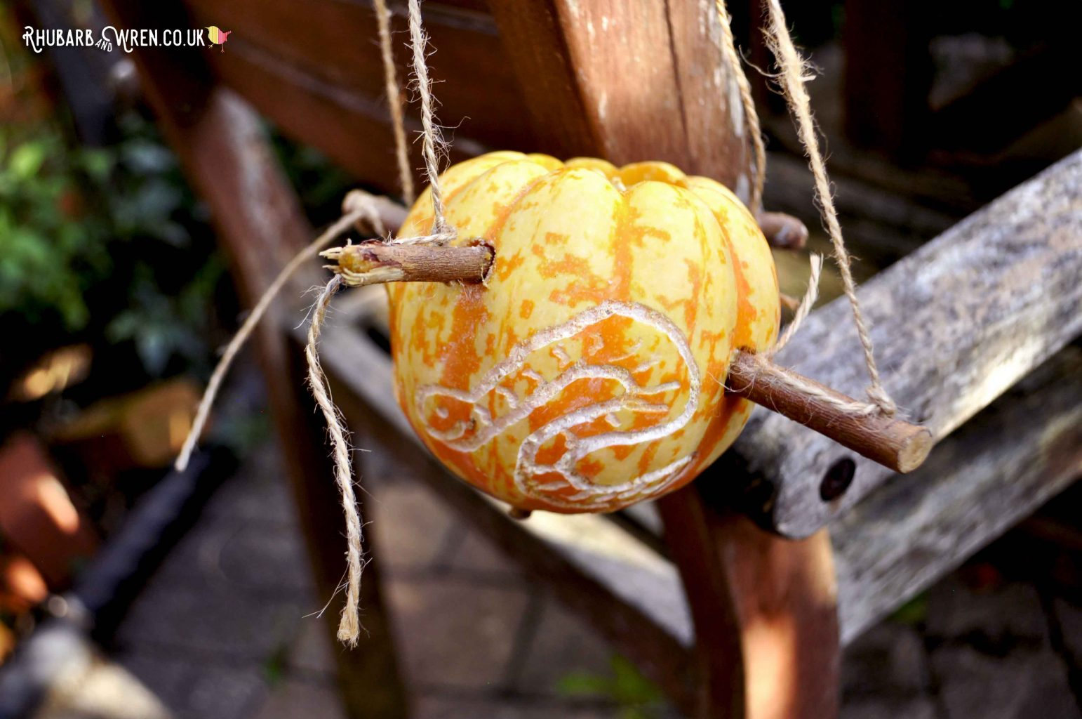 worm carved on side of pumpkin bird feeder