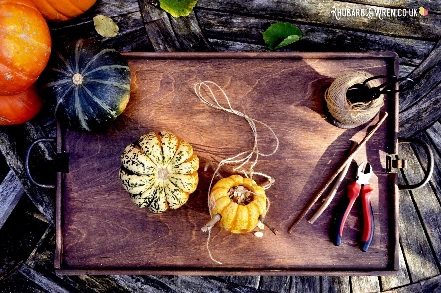 bird feeder made from a munchkin pumpkin