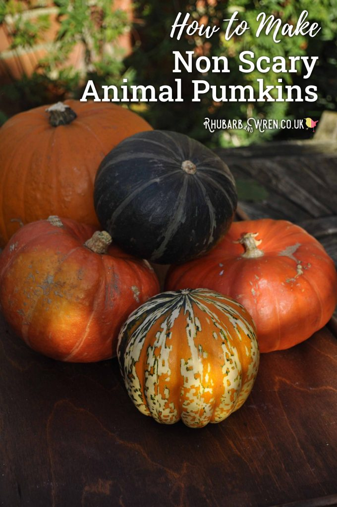 non-spooky animal pumpkins
