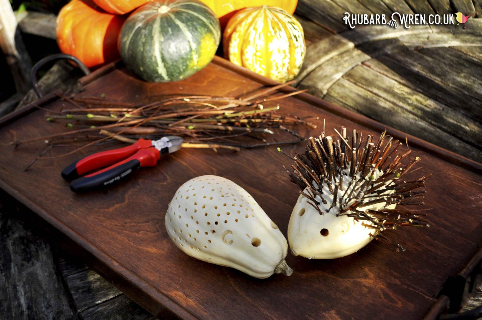 Making hedgehog pumpkins